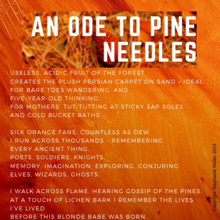 Ode to Pine Needles Poem by Stephanie Nolan